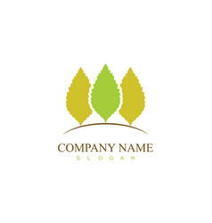 green tree insurance logo vector image