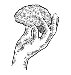 human brain in hand sketch engraving vector image