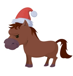 Little orse vector image