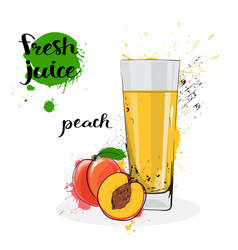 peach juice fresh hand drawn watercolor fruit and vector image