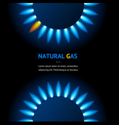 Realistic detailed 3d natural gas flame kitchen vector