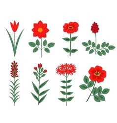 Red flowers set vector image