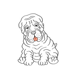 sitting hand drawn shar pei vector image