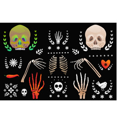 skulls and skeleton body parts clip art objects vector image