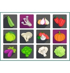 Vegetables flat icons set vector