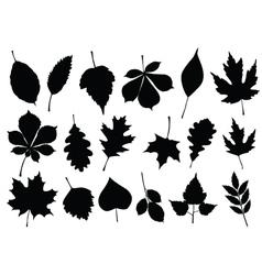 Autumn leaf silhouettes vector