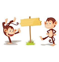 Monkeys with banner vector image