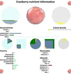 Cranberry nutrient information vector