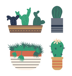 Cactus with flowering flower on green plant in vector