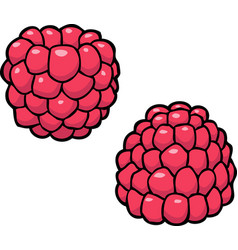 cartoon doodle raspberry vector image