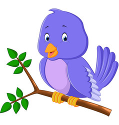 cute purple bird cartoons vector image