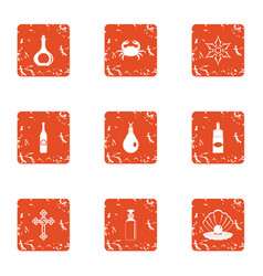 denomination icons set grunge style vector image