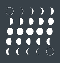 flat style lunar phases vector image