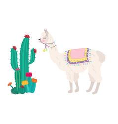 Llama and cactus vector