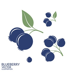 Blueberry Set vector image