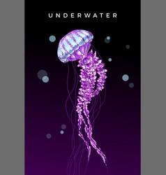Jellyfish on dark background word underwater vector