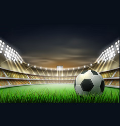 Realistic footbal soccer stadium background vector