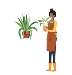 Woman with houseplant on macrame hangers vector