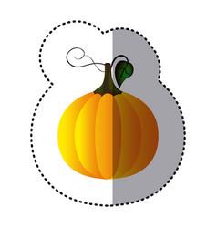 sticker colorful pumpkin vegetable halloween icon vector image