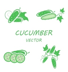 flat cucumber icons set vector image vector image