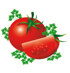 red ripe tomatoes with herbs design of healthy vector image vector image