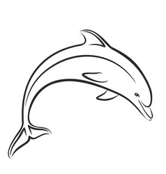 Dolphin sketch in jump vector