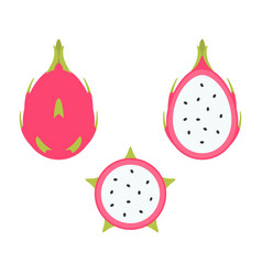 dragon fruit set vector image