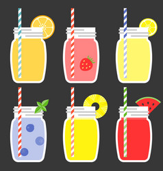 fruit juice in jar vector image