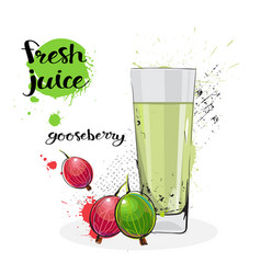 Gooseberry juice fresh hand drawn watercolor fruit vector