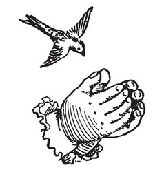 Hands forming a nest for a bird vintage engraving vector