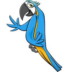 macaw parrot cartoon vector image