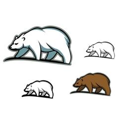 Arctic bears vector image