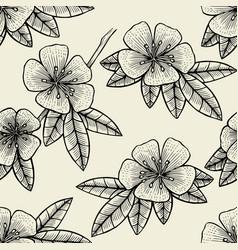 seamless flower of fruit tree vector image