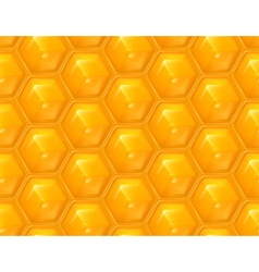 Honeycomb seamless background vector image vector image