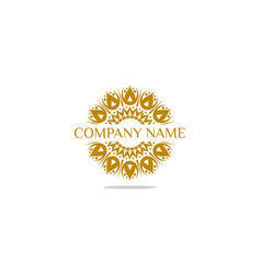 abstract elegant ornamental logo icon design vector image