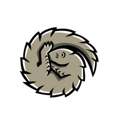 pangolin scaly anteater curled mascot vector image