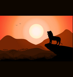 Silhouette king lion african nature vector