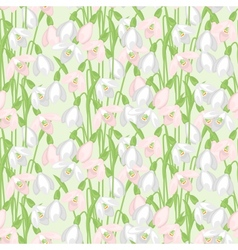 Spring flowers snowdrops natural seamless pattern vector image