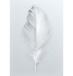 Bird feather icon vector image vector image