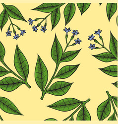 pattern herbs and flowers vector image vector image