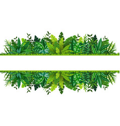 a tropical rainforest banner vector image