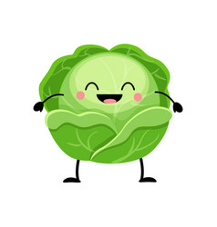 cabbage in flat style isolat vector image
