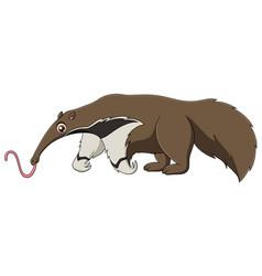 Cute anteater cartoon vector