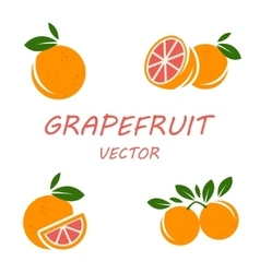 Flat grapefruit icons set vector
