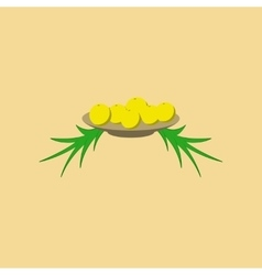 Flat on background of plate oranges vector