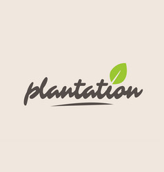 Plantation word or text with green leaf vector