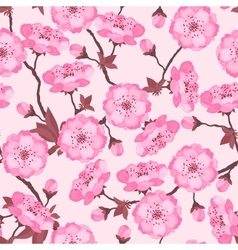 Spring flowers cherry natural seamless pattern vector image