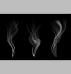 gentle smoke flow on black vector image vector image