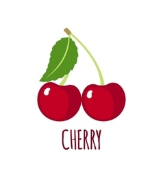 Cherry icon in flat style on white background vector image