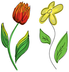 Drawn colored flowers vector